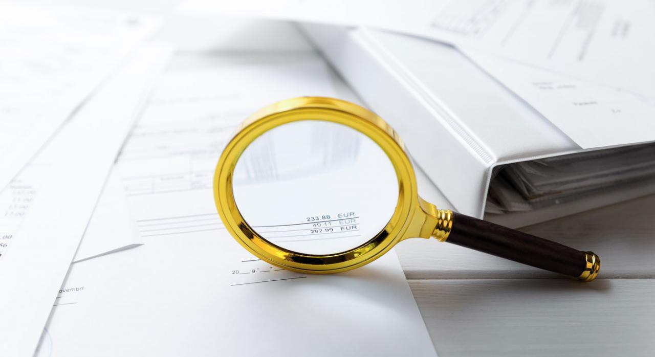Lupa sobre documentos de una auditoría. Convocatoria EAP ROAC 2019